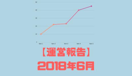 【運営報告】2018年6月 9ヶ月経過(本業多忙+夏風邪でトドメ)